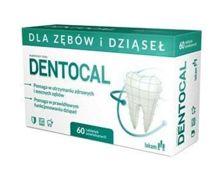 DENTOCAL x 60 tabletek